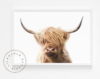 Highland Cow Print - Printable Wall Art - Modern Boho or Farmhouse Nursery Decor