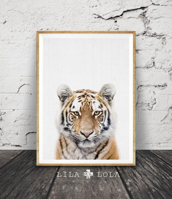 Tiger Print, Nursery Animal Wall Art, Safari Nursery Decor, Baby Boys Room, Kids Tiger Photo, Printable Large Poster Instant Download