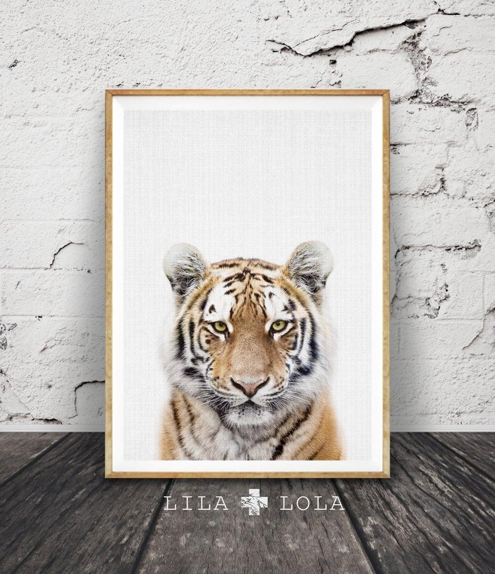 Tiger Print, Nursery Animal Wall Art, Safari Nursery Decor, Baby Boys
