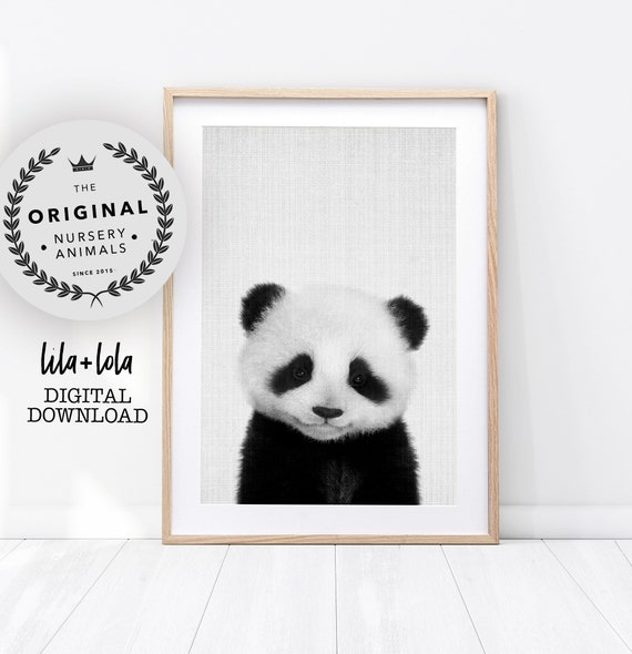 Panda Print - Digital Download