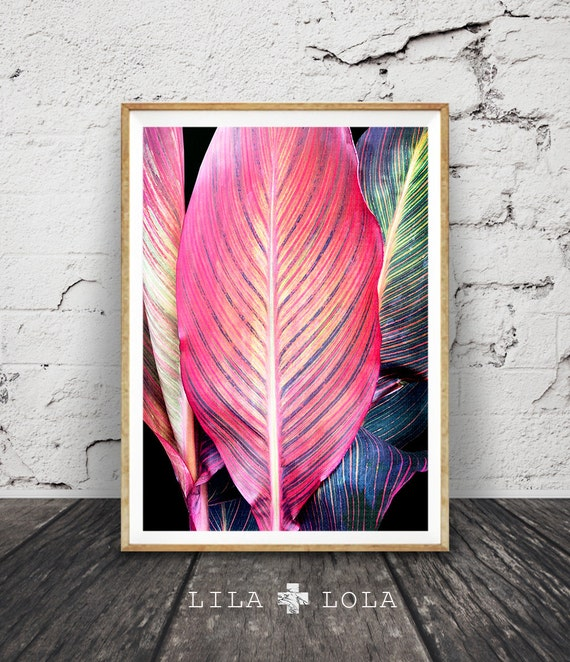 Tropical Leaf Print, Tropical Wall Art, Colourful Decor, Printable Plant Leaf Photo, Instant Digital Download, Magenta Yellow Green Purple