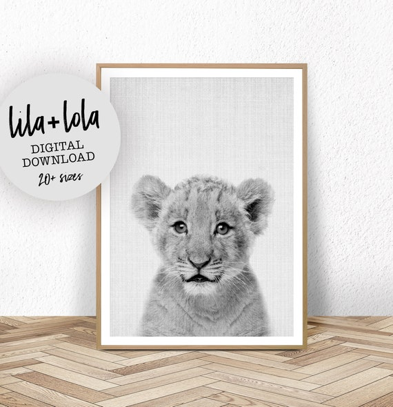 Baby Lion Cub Print - Digital Download