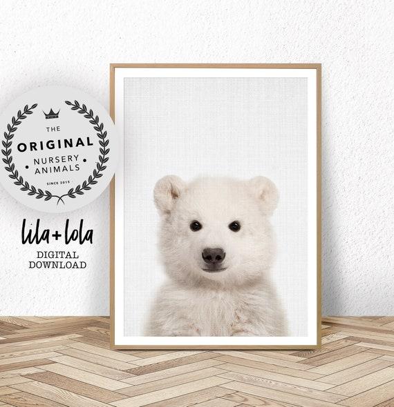 Baby Polar Bear Print - Digital Download