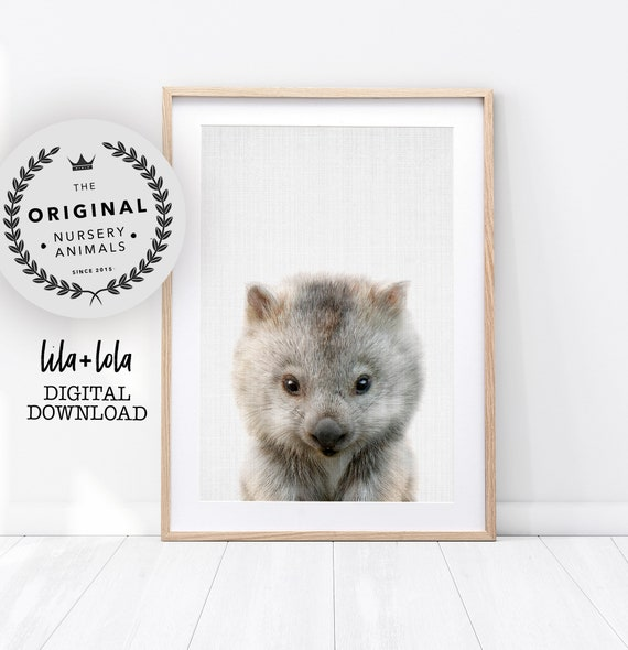 Baby Wombat Print - Digital Download