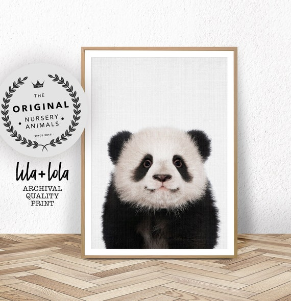 Panda Print, Baby Nursery Animals Wall Art, Panda Bear Cub, Nursery Decor, Large Poster, Large Wall Art, Baby Animal Photo