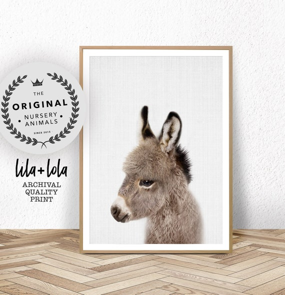 Donkey Print, Nursery Animal Wall Art, Baby Shower Gift, Kids Room Poster, Large Wall Art, Cute Baby Nursery Donkey Wall Art