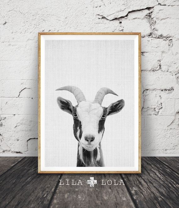 Goat Print, Nursery Farm Animal Wall Art, Black and White Printable Photo, Digital Download, Large Poster, Modern Minimalist, Grey Decor