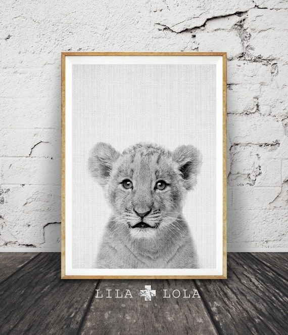 Lion Cub Print, Baby Wall Art, Nursery Decor, Safari Animal, Printable Digital Download, Modern Minimalist, Black and White Kids Room Poster