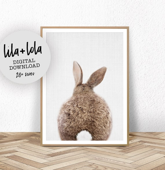 Bunny Rabbit Tail Print - Digital Download