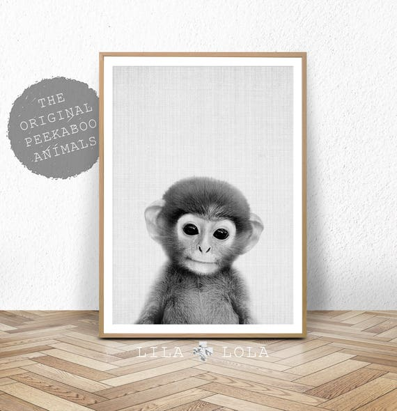 Baby Animal Nursery Art, Monkey Printable Wall Art, Safari Decor, Large Nursery Poster, Digital Download, Black and White Baby Monkey