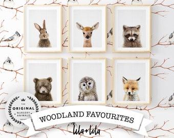 Set of 6 Baby Animal Prints, Woodland Nursery Decor, Printable Wall Art Posters