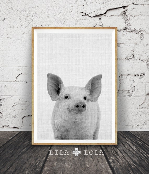 Pig Print, Baby Piglet Wall Art, Cute Farm Animal Photo, Black and White Nursery Decor, Printable Art, Instant Download, Grey, Photography
