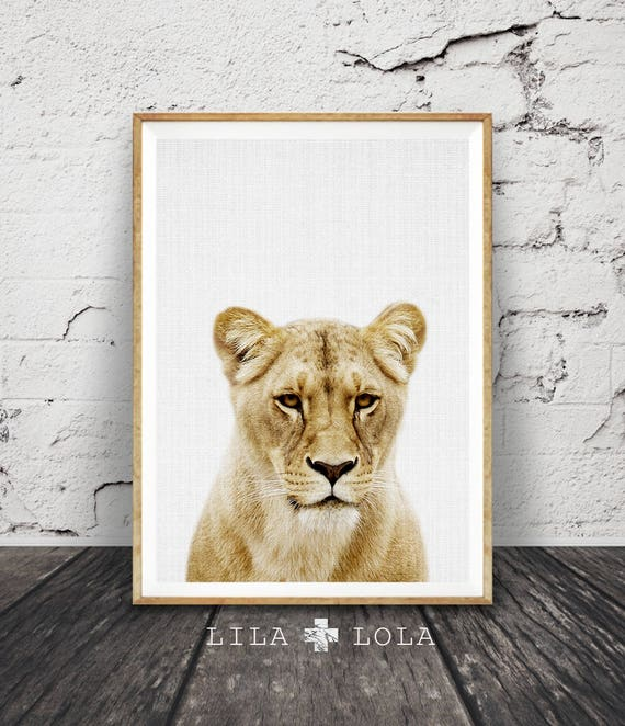 Lioness Print, Lion Wall Art, Safari Nursery Poster, Colour African Animal, Large Instant Digital Download, Minimalist, Kids Room Decor