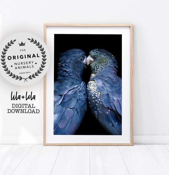 Love Birds Print - Digital Download