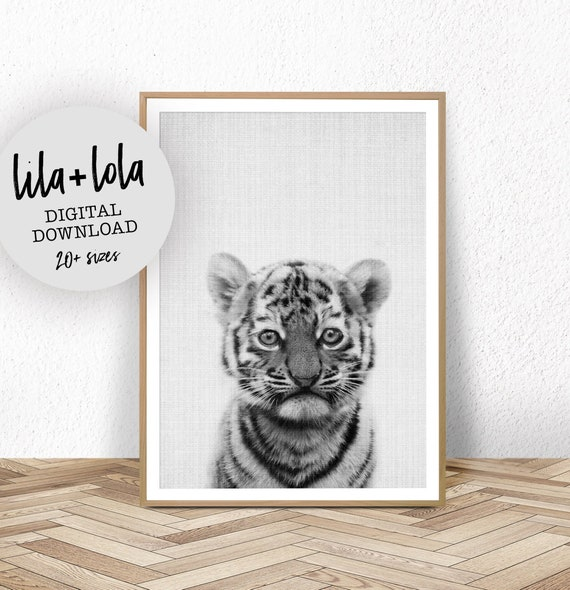 Baby Tiger Print - Digital Download