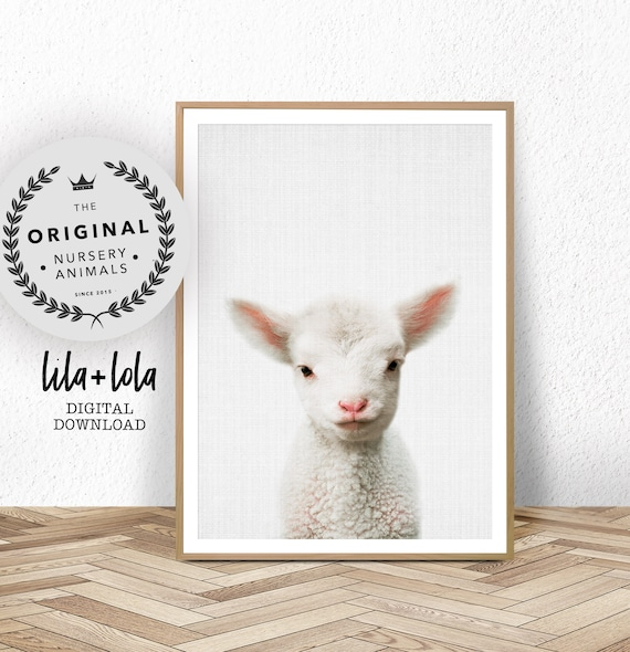 Lamb Print - Digital Download