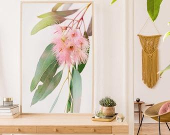 Gum Blossom Print, Printable Wall Art, Australian Native Flower, Eucalyptus Leaves, Pink and Green leaf Botanical Decor, Large Poster