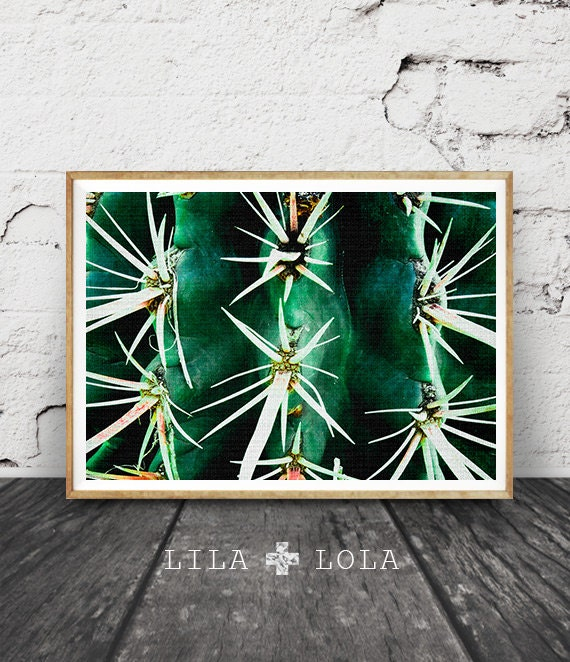 Cactus Photo Print, Arizona Desert Photo, Botanical Wall Art, Western Decor, Green Plant, Printable Instant Download, Large Poster Art