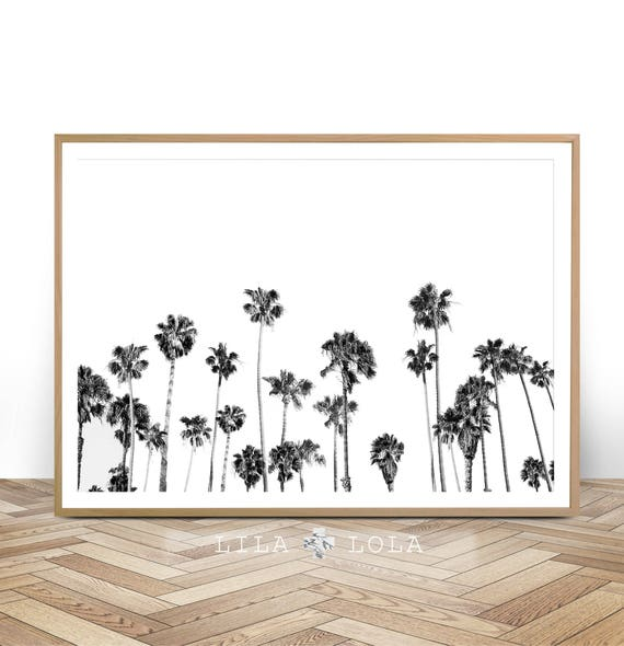 Palm Tree Print, Tropical Wall Art Decor, Black and White Palm Tree Photography, Large Printable Poster, Digital Download, Beach Plant Decor