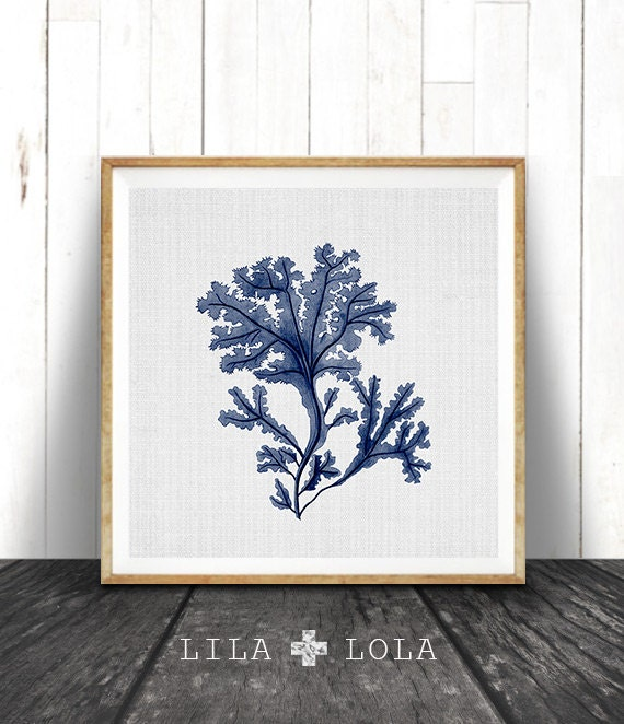 Seaweed Illustration, Indigo Blue Square Coral Print, Coastal Decor, Beach Nautical, Printable Digital Download, Sea Pulp, Ocean Plant Life