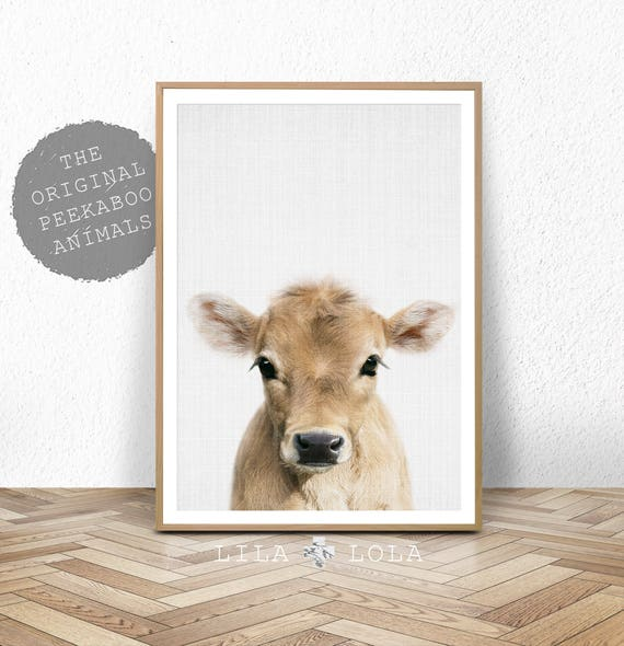 Cow Print, Farm Baby Animal, Calf, Farmhouse Nursery Wall Art Decor, Printable Digital Download, Poster, Baby Bedroom, Kids Bedroom Decor