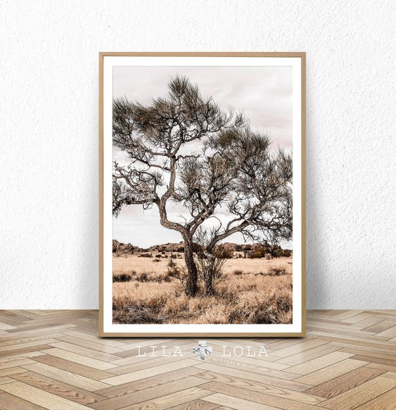 Australian Outback Landscape, Wall Art Print, Desert Tree Photography, Wall Art Print, Boho Decor, Large Printable Poster, Digital Download