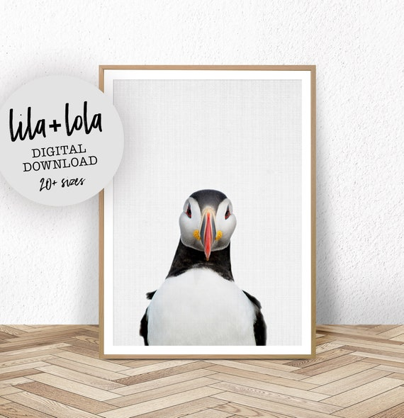 Puffin Print - Digital Download