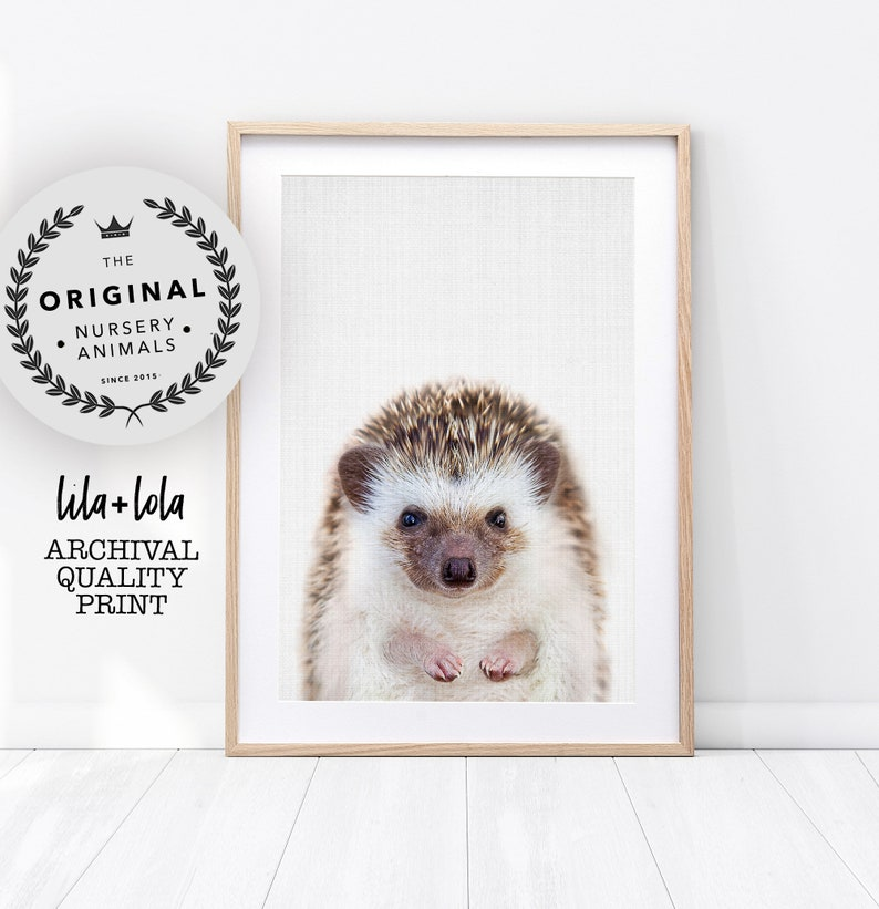 Hedgehog Print Printed and Shipped Various Sizes Baby image 0