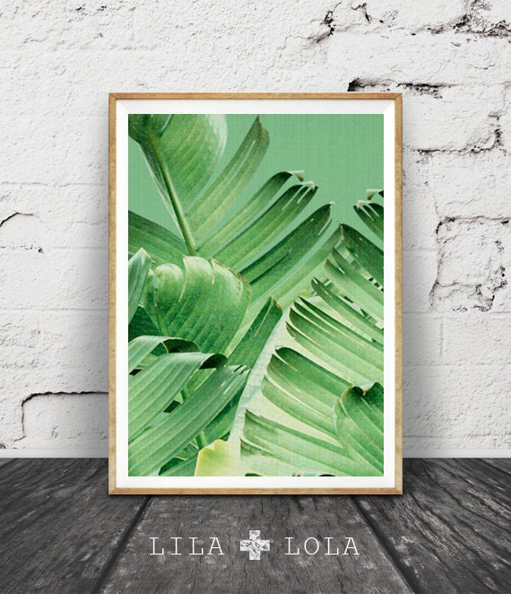 Banana Leaf Print, Tropical Decor Plant, Botanical, Tropical Wall Art Decor, Printable Art, Sage Green, Plant Photography, Green Leaves