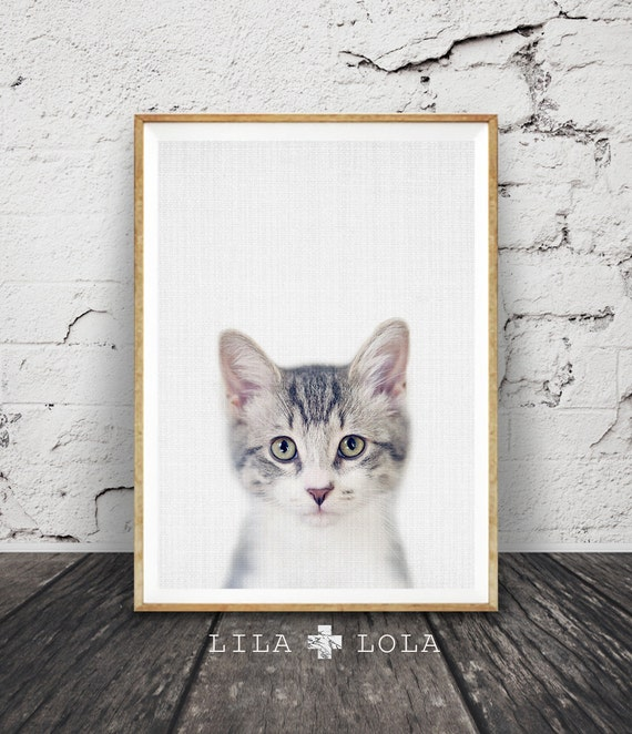 Kitten Print, Nursery Baby Animal Wall Art, Large Poster, Digital Download, Modern Minimalist Decor, Cat Photo, Cute Kitten, Babies Room