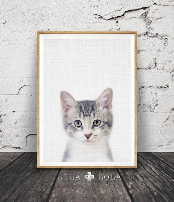 Kitten Print, Nursery Baby Animal Wall Art, Large Poster, Digital Download, Modern Minimalist Decor, Cat Photo, Cute Kitten, Babies Room