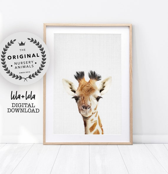 Giraffe Print, Safari Nursery Animal, Printable Wall Art, African Jungle Decor, Baby Animal Poster