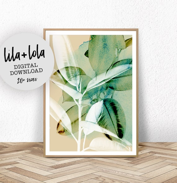 Ficus Elastica Print - Digital Download
