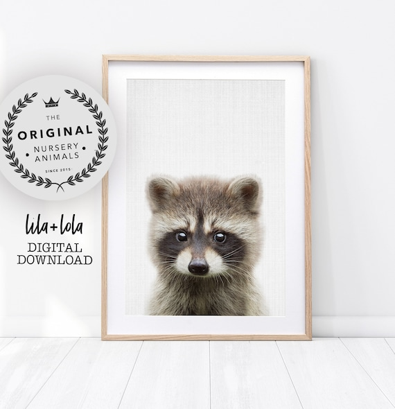 Raccoon Print - Digital Download
