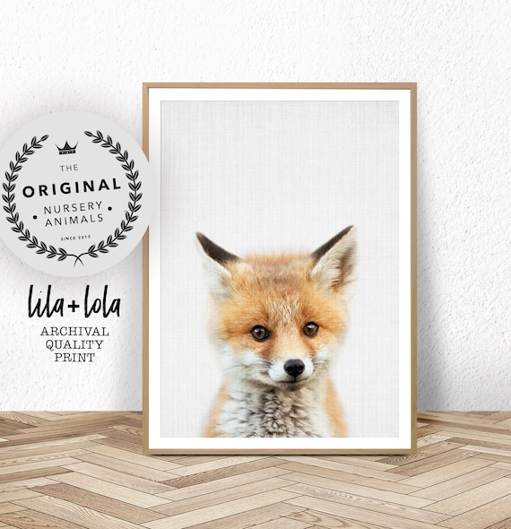 Baby Fox Print - Printed and Shipped