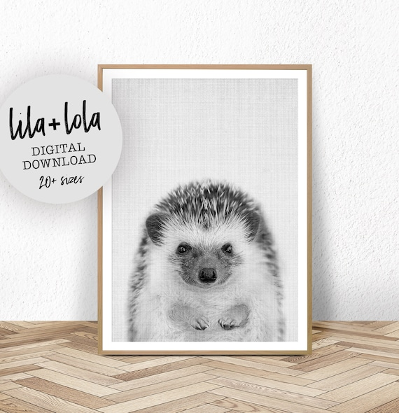 Hedgehog Print - Digital Download