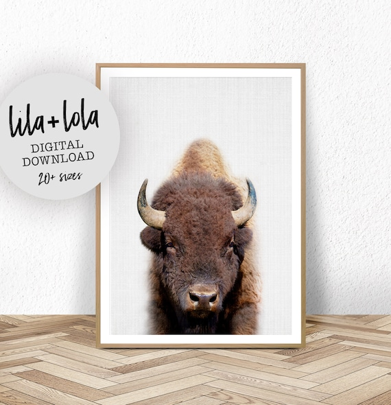 Buffalo Print - Digital Download