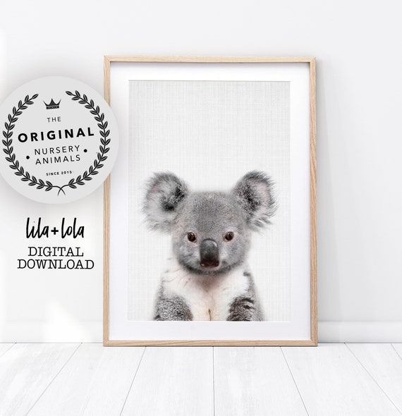 Baby Koala Print - Digital Download