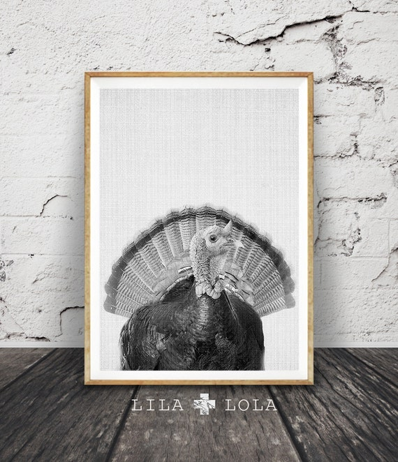 Turkey Print, Wall Art, Black and White, Animal Photography, Bird Photo, Farm Animal, Nursery Decor, Printable Poster, Thanksgiving Art
