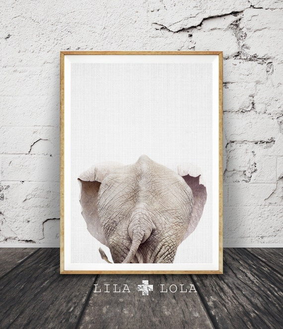 Elephant Tail Print Wall Art, Rear View, Baby Animal, Colour Photo, African Safari Decor, Nursery Printable Poster, Digital Download