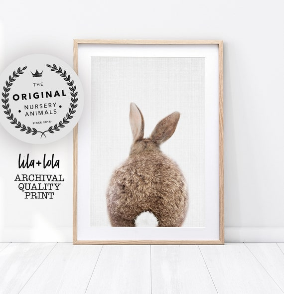 Bunny Rabbit Tail Print - Printed and Shipped