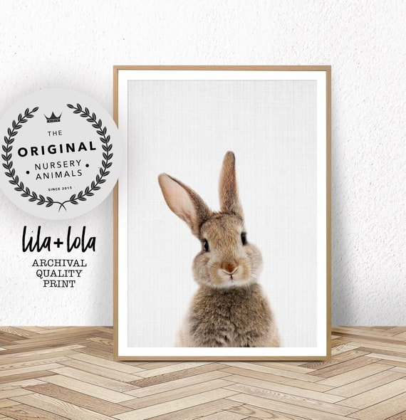 Bunny Rabbit Print - Printed and Shipped