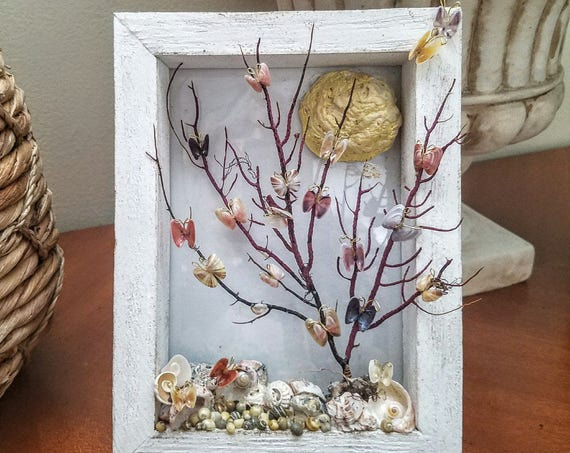 Magical Seashell Shadowbox
