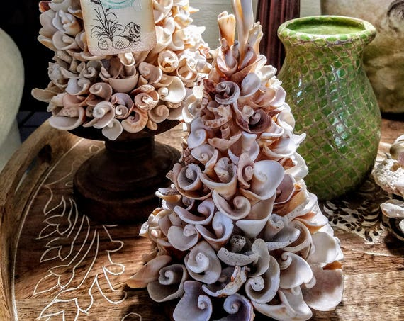 "Mini ""Tree of Hope"" Seashell Topiary"