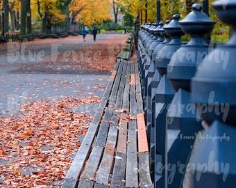 Autumn Photography, Benches, Central Park Promenade, Mall, Foliage, Fall, New York Print, Art Print, NY, Manhattan, Wall Art, Living Room