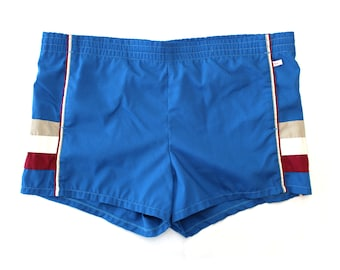 Vintage Blue Jantzen Swim Trunks / Vintage Lined Men's Swim Shorts