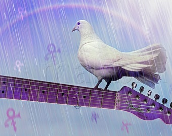 Doves Cry, Doves Cry, Prince