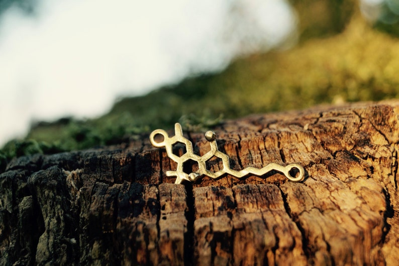 THC Necklace small Molecular Structure Brass/ SILVER image 0