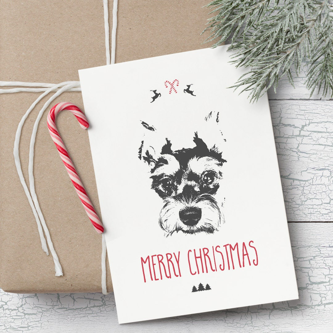 Schnauzer Dog Christmas Boxed Cards | www.topsimages.com