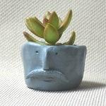Custom order for Abbie, Succulent Clay Pot, Quirky Face Pot, Succulent Planter